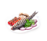 Grilled seabass on plate Royalty Free Stock Photos