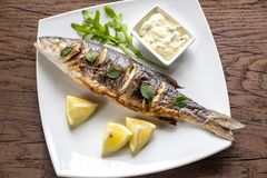 Grilled seabass on the plate Stock Photos