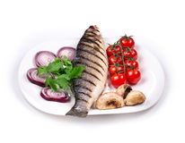 Grilled seabass on plate with tomatoes. Royalty Free Stock Images