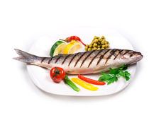 Grilled seabass on plate. Royalty Free Stock Images