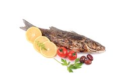 Grilled seabass and vegetables. Royalty Free Stock Photo