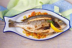 Grilled seabream on carrot, onion and celery stalks. Grilled seabream on carrot, onion and celery stalks Royalty Free Stock Image