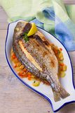 Grilled seabream on carrot, onion and celery stalks. Grilled seabream on carrot, onion and celery stalks Stock Photo