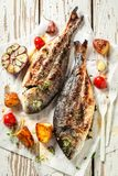 Grilled seabream and potatoes with herbs and tomatoes. On old table royalty free stock images