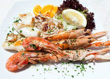 Grilled Seafood Dish Stock Photo