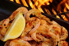 Grilled  Seafood on open BBQ fire, XXXL Royalty Free Stock Photography