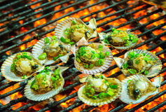 Grilled seafood oysters on the grill Royalty Free Stock Photo
