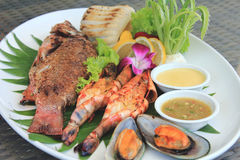 Grilled Seafood Platter Stock Photography