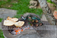 Grilled seafood Royalty Free Stock Photo