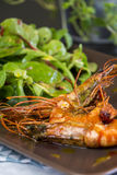 Grilled seasoned pink prawns Stock Photography