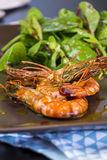 Grilled seasoned pink prawns Royalty Free Stock Photography