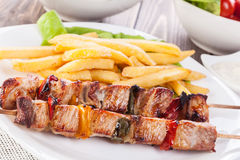Grilled shashlik with chips Royalty Free Stock Photos