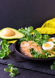Grilled sheatfish fish steak with avocado, arugula and salad Royalty Free Stock Photo