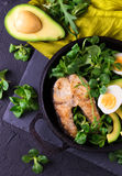 Grilled sheatfish fish steak with avocado, arugula and salad Royalty Free Stock Images