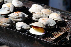 Grilled Shellfish Stock Image