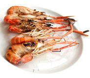 Grilled shrimp Stock Photo