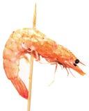 Grilled shrimp Stock Images