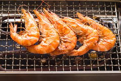Grilled shrimp or easy BBQ grilled shrimp on electric grill.,  C Stock Photography
