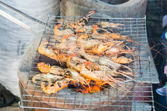 Grilled shrimp on grill with stove in background. Royalty Free Stock Images