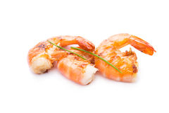 Grilled shrimp isolated on white Royalty Free Stock Photography