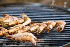 Grilled shrimp stock image