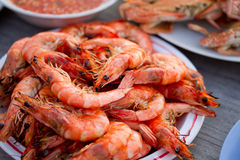 Grilled Shrimp on Plate Stock Images