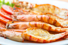 Grilled shrimp on plate Stock Image