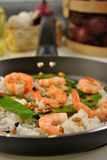 Grilled shrimp with rice and vegetable Stock Images