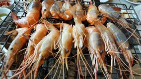Grilled Shrimp. Saefood grill shrimp ,Thai food, Thailand Stock Photos