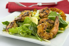 Grilled Shrimp salad Avocado. Tapas Stock Photo
