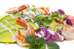 Grilled Shrimp salad with avocado Stock Photography