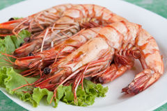 Grilled shrimp sea food Stock Photography