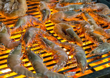Grilled shrimp seafood. Stock Photo