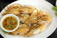 Grilled Shrimp seafood in dish. Royalty Free Stock Image