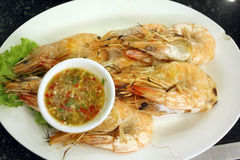 Grilled Shrimp seafood in dish. Stock Images