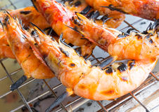 Grilled shrimp skewers Royalty Free Stock Photos