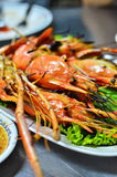 Grilled shrimp with spicy sauce Stock Image