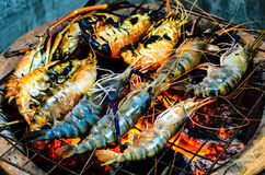 Grilled Shrimp. On the stove Royalty Free Stock Photo