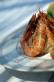 Grilled shrimps Royalty Free Stock Photos