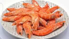 Grilled shrimps footage on white background stock video footage