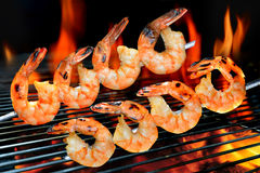 Grilled shrimps Stock Image