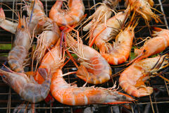 Grilled shrimps Stock Photos