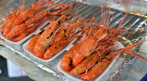 Grilled shrimps. Fresh grilled shrimps on tray royalty free stock image