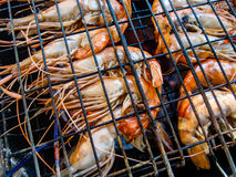 Grilled shrimps on grill Royalty Free Stock Photos