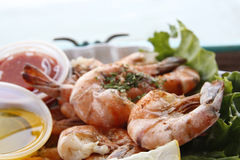 Grilled shrimps in harbour restaurant Stock Image