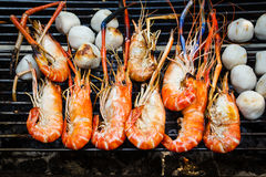 Grilled shrimps. Royalty Free Stock Photography