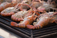 Grilled shrimps seafood by fire and BBQ Flames Royalty Free Stock Photography