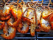Grilled Shrimps at Street Market royalty free stock photos