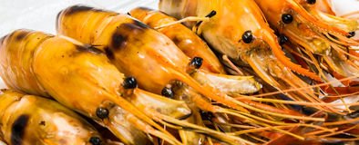 Grilled shrimps. With Thai style Royalty Free Stock Photography