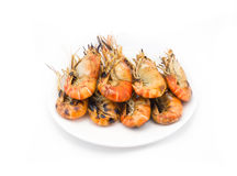 Grilled shrimps on the white plate Royalty Free Stock Photo